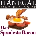 Hanegal Bacon