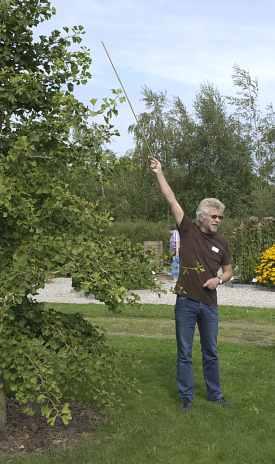 Rundvisning i den økologiske have